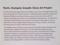 Fierce Art project