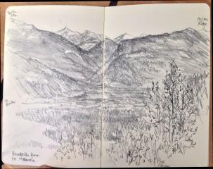 Revelstoke from Mt MacKenzie